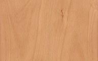 Βeech wood