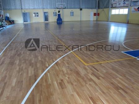 Sports Facilities Floors